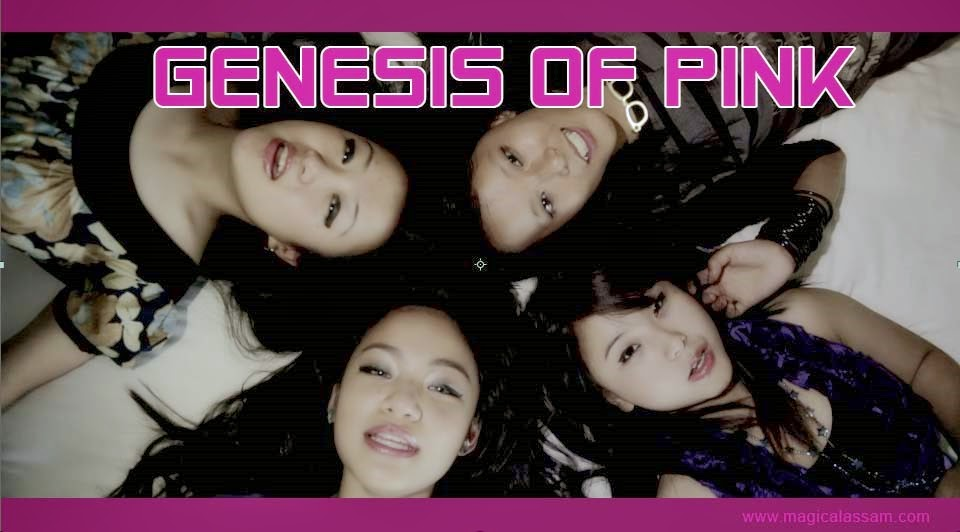 Genesis Of Pink-female-band