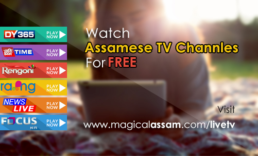 Assamese News Channel, News Live, DY365 Live Streaming