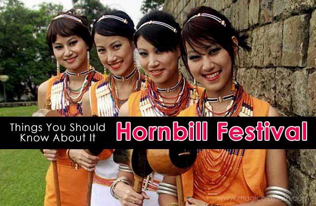 about-hornbill-festival-2014
