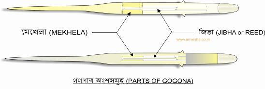 gogona