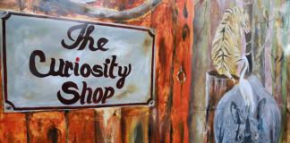 assamese-film-the-curiosity-shop