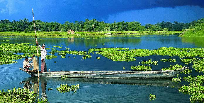 awesome-assam
