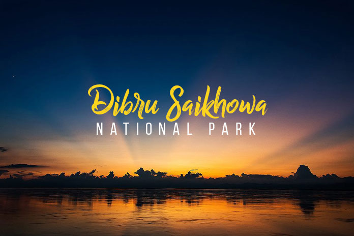 dibru saikhowa national park